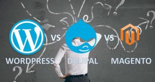 How To Choose Better Platform WordPress Magento or Drupal